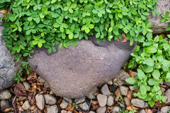 Roca y grava Imagen de archivo libre de regalías