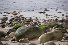 Rocas Fotografía de archivo