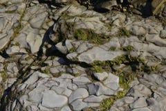 Rocas Fotografía de archivo libre de regalías