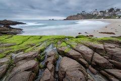 Rocas agrietadas de la playa cubiertas con el musgo imagen de archivo libre de regalías