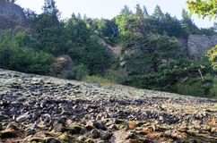 Rocas caidas, Eagle Creek, garganta de Columbia, Oregon Fotografía de archivo libre de regalías