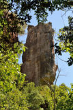 Rocas calizas. Limestone formations in the Sot del Bac (The Figuer�, Barcelona Stock Image