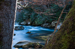 Rocas con el río que fluye suave Imágenes de archivo libres de regalías