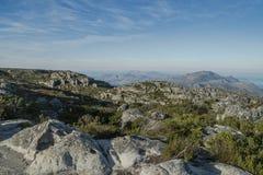 Rocas con la vegetación en la montaña de la tabla fotografía de archivo libre de regalías
