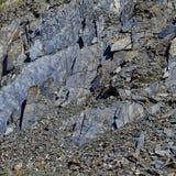 Rocas con las piedras estructuras Un fondo, verano Susuman El área de Magadan Kolyma IMG_9364 imagenes de archivo
