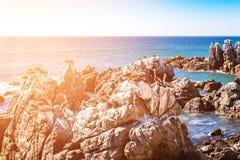 Rocas con los pelícanos marrones en Chile Fotos de archivo