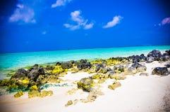 Rocas coralinas Imagen de archivo libre de regalías