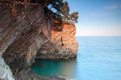 Rocas costeras con los árboles de pino. Mar adriático Fotografía de archivo