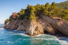 Rocas costeras con los árboles de pino. Mar adriático Fotos de archivo