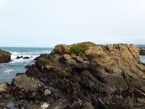 Rocas costeras a lo largo de la orilla de Fort Bragg - del viaje por carretera ruta del descubrimiento de la carretera 1 abajo a  Fotografía de archivo libre de regalías