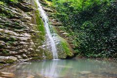 Rocas cubiertas con la hiedra y el musgo con la cascada que fluye abajo Imágenes de archivo libres de regalías
