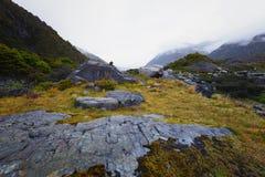 Rocas cubiertas con los musgos amarillos Esto es una posición ventajosa que pasa por alto el río de Tasman Fotos de archivo