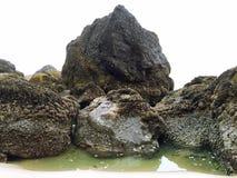 Rocas cubiertas crustáceas imagen de archivo