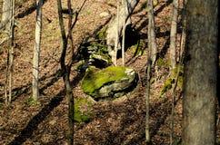 Rocas cubiertas de musgo fotos de archivo libres de regalías