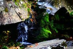 Rocas cubiertas de musgo Fotografía de archivo