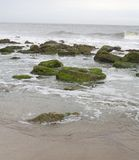 Rocas cubiertas de musgo Imágenes de archivo libres de regalías