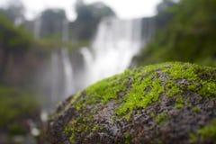 Rocas cubiertas de musgo en las caídas Foto de archivo