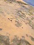 Rocas cubiertas en arena Foto de archivo libre de regalías