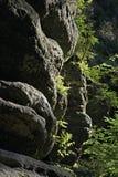 Rocas de Adrspach-Teplice República Checa Imagen de archivo libre de regalías