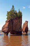 Rocas de Hopewell Foto de archivo libre de regalías