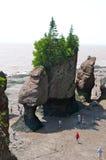 Rocas de Hopewell, Nuevo Brunswick, Canadá Imagen de archivo