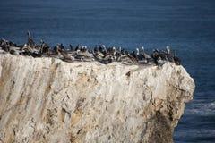 Rocas de la costa costa de California Fotos de archivo libres de regalías
