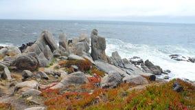 Rocas de la costa de Monterey imágenes de archivo libres de regalías