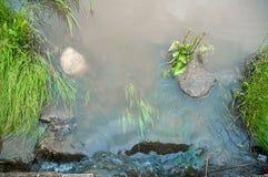 Rocas de la hierba verde de la corriente del agua Fotos de archivo libres de regalías