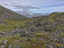 Rocas de la isla de Fogo, vegetación, icebergs Imagen de archivo