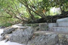 Rocas de la línea de la playa Fotos de archivo libres de regalías