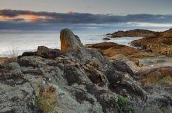 Rocas de la mimosa Foto de archivo libre de regalías