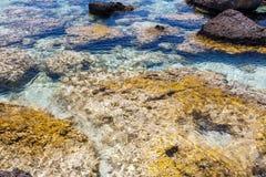 Rocas de la orilla en la playa de Elafonisi crete Grecia fotografía de archivo libre de regalías
