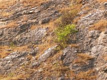 Rocas de piedra como fondo de la naturaleza Foto de archivo
