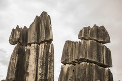 Rocas de piedra del bosque Fotos de archivo