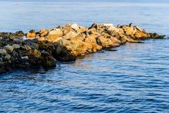 Rocas de relleno de la tierra Foto de archivo