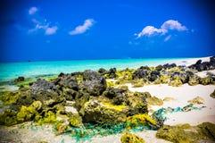 Rocas 2 del coral Imágenes de archivo libres de regalías