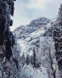 Rocas del invierno Imagen de archivo