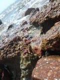 Rocas del mar Fotografía de archivo