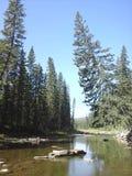 Rocas del río Foto de archivo