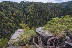 Rocas del teplice de Adrspach Fotografía de archivo libre de regalías