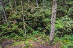 Rocas del teplice de Adrspach Foto de archivo libre de regalías