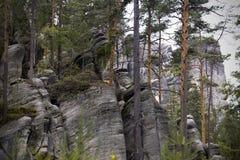 Rocas del teplice de Adrspach Fotografía de archivo