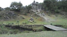 Rocas empiladas Fotos de archivo