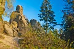 Rocas en bosque Fotos de archivo