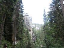 Rocas en bosque Imagenes de archivo