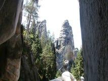 Rocas en bosque Imagen de archivo libre de regalías