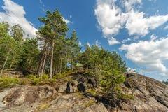 Rocas en el bosque del verano foto de archivo