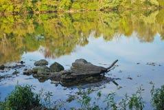Rocas en el río Imagenes de archivo