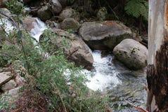 Rocas en el río que fluye imágenes de archivo libres de regalías