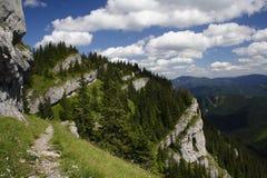 Rocas en el Tatras inferior fotos de archivo libres de regalías
